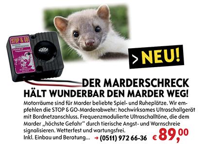 marderschreck-internet-420px